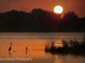 Tranqulity_watermarked