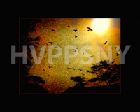HVPPSNY September Print comp 1st place winner; Vickie Muller- Into the Light